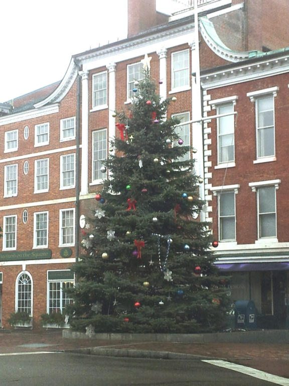 Portsmouth NH Christmas Tree in downtown Portsmouth market square mall