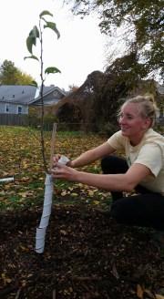 PlantingTrees (1)