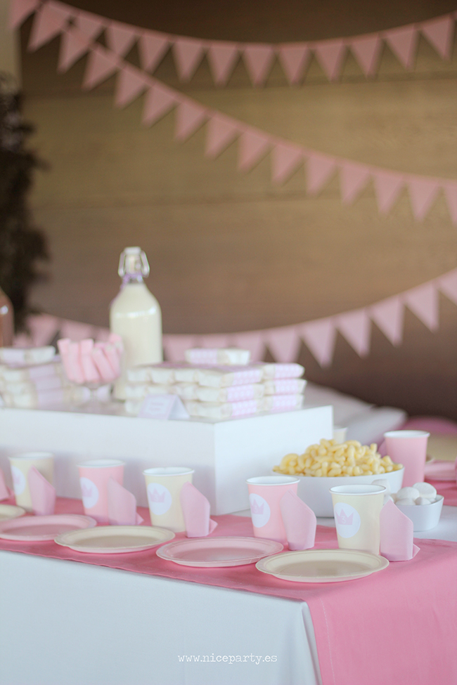 Nice-Party-cumpleaños-princesas-(9)