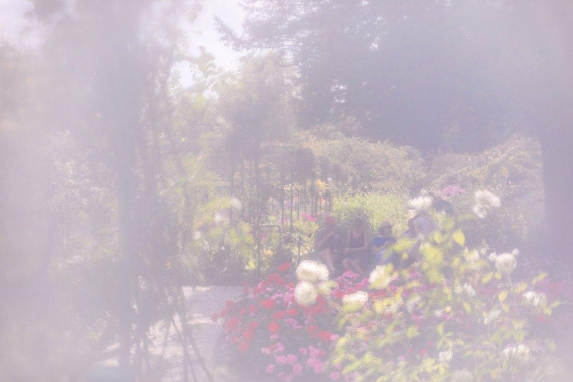 Ninah Gerude, Ninah Bulles, Giverny, Claude monet, voyage, france, vintage, poetique, retro, jardin, fleurs botanique, post card, original copyright tout droit réserver Ninah gerude