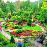view post Butchart-Gardens-10