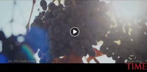 origins of wine in Republic of Georgia