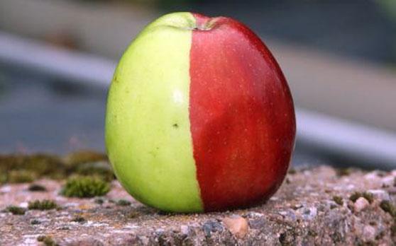 Manzana doble