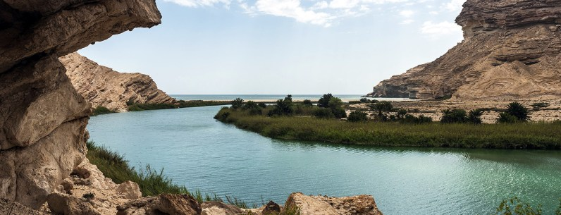 Oman-11-2014-Gasser-(18)web