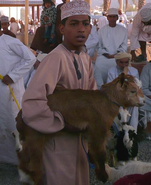 Oman Linsbauer 2-3