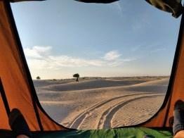 Der Blick aus dem Zelt direkt nach dem Aufwachen.