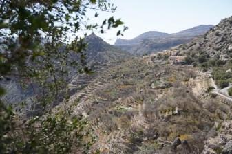 Jebel Akhdar 2