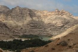 Oase auf dem Weg nach Muscat
