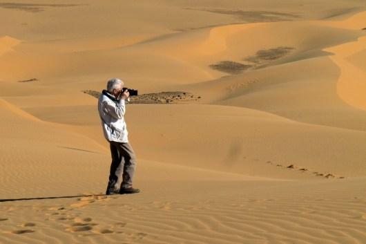 In den Weiten der Wüste