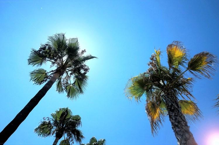 夏季養膚5關鍵!在大熱天依然保有水嫩美肌的保養迷思破解~