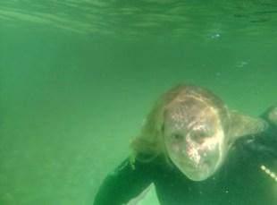 Unterwasser Whitsunday Islands