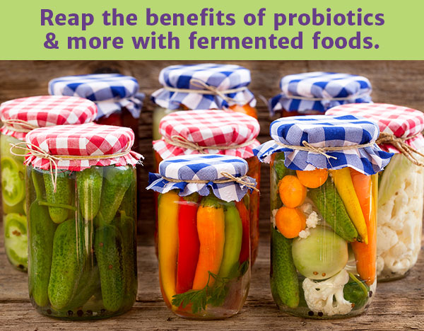 fermented_foods_supplements