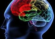 Πρόληψη αγγειακού εγκεφαλικού-Καρωτιδική νόσος-Στένωση καρωτίδας
