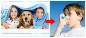Χοντρές μοκέτες, κατοικίδια και λούτρινα παιχνίδια αν δεν βγουν από τη ζωή του αλλεργικού παιδιού θα οδηγήσουνε σύντομα σε αλλεργικό άσθμα