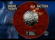 Νέα επαναστατική θεραπεία κατά του καρκίνου