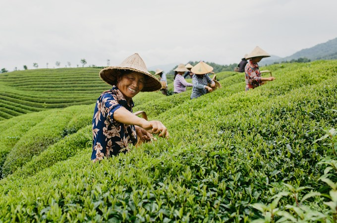 Communitea Matters: Celebrating Partnership & Fair Trade