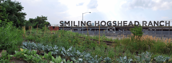 Smiling Hogshead Ranch