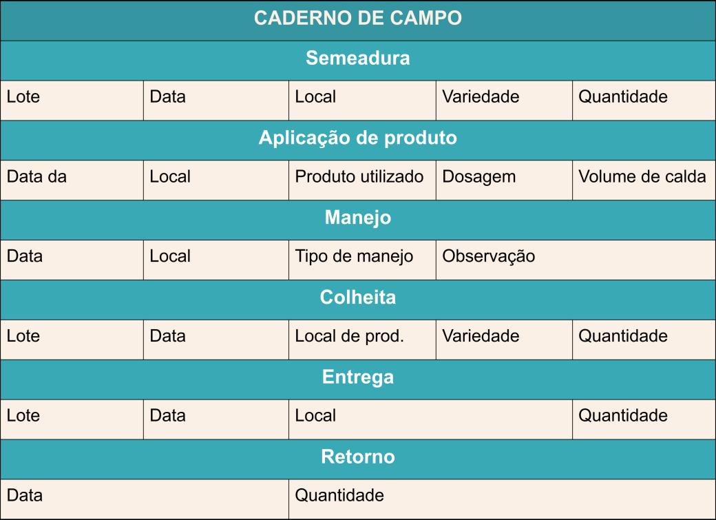 CAderno de campo