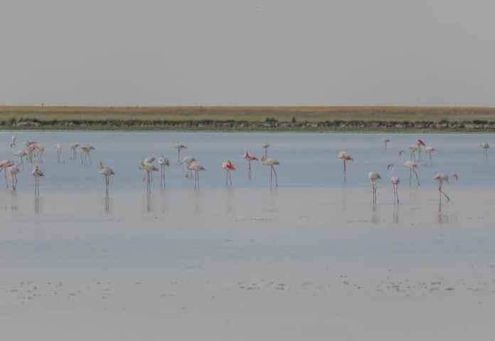 Konya Tuz Gölü