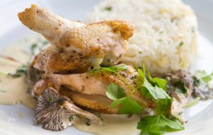 Image of chicken and mushrooms