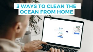 how to clean the ocean