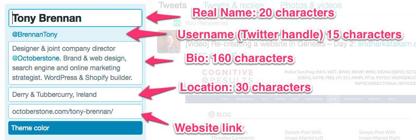 Twitter bio info