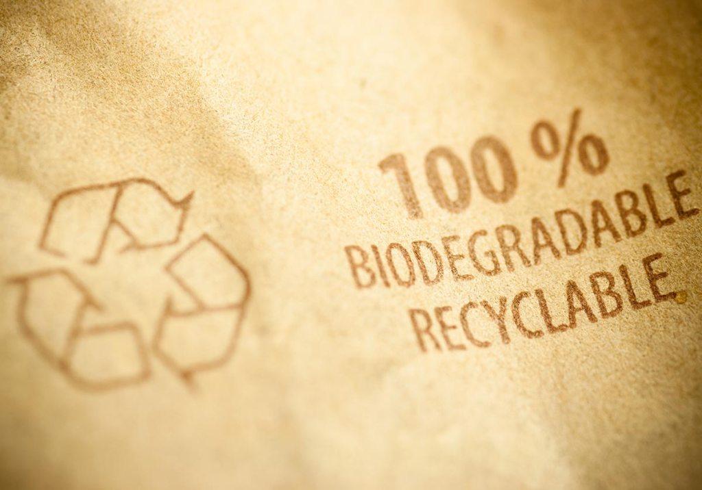 Biodegradável vs Compostável: quais são as diferenças? title