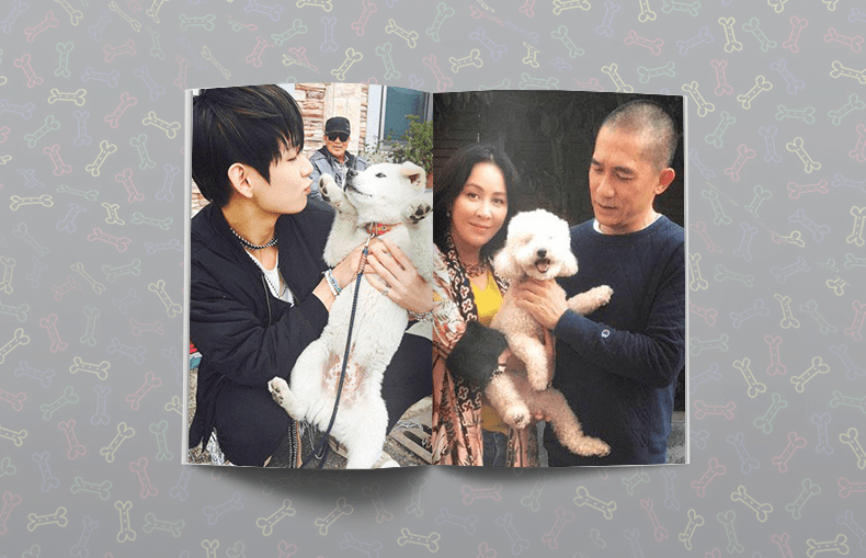 national puppy day bts v soonshim carina lau tony leung