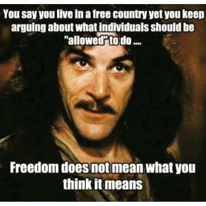 Anarchy & Freedom does not mean what you think