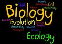 BSEB Biology Sample Paper for Class 12