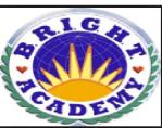 Bright Academy Mohali Chandigarh Reviews