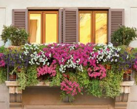 descubre ideas para decorar tu balcon con plantas