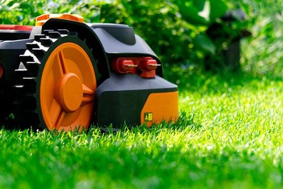 Tu jardín en verano