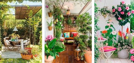 Plantas y flores en terrazas