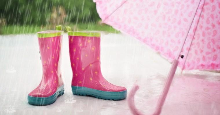 【野餐趣】野餐遇到雨,噢!我需要雨天備案