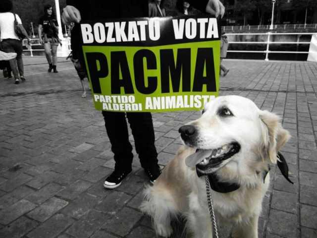 vota pacma