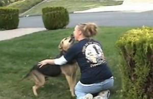 perro recibe mujer tras 3 años