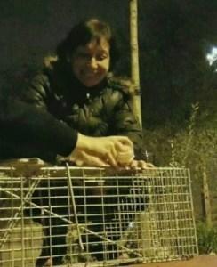 Asunción capturando gatitos