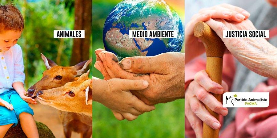 animales, medio ambiente y justicia