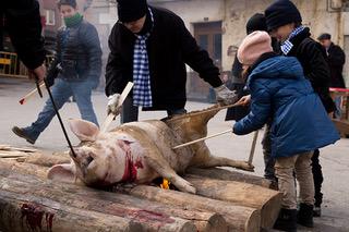 ninos-matanza-del-cerdo-1