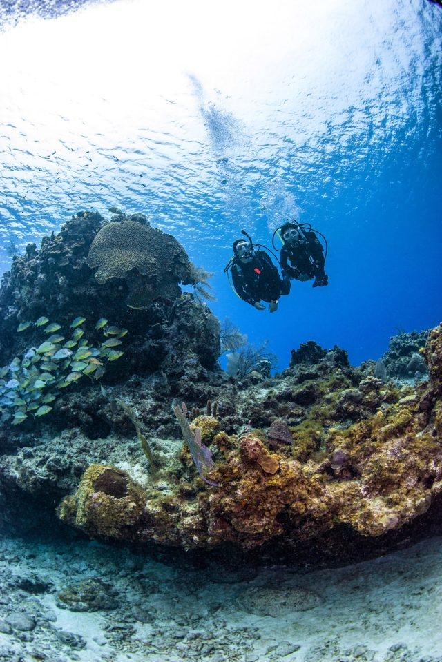 open water diver course can change your life