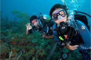 PADI 專長課程丨帶給你探索海洋世界的無限可能