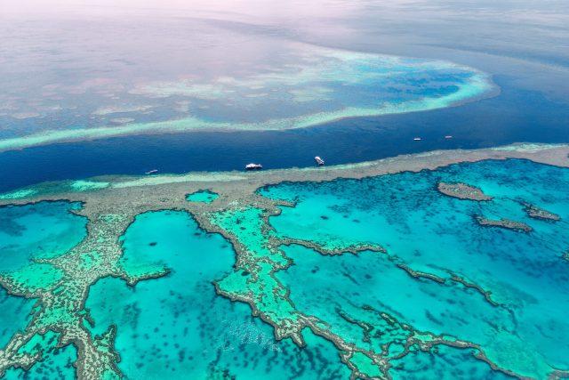 Great Barrier Reef - Aerial Shot - Reef - Blue Water
