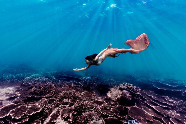 Mermaid over coral
