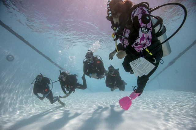 Instructor - Open Water Course - Learn to Dive