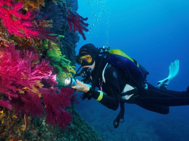diving in costa brava spain