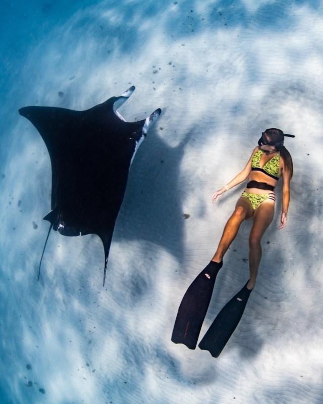 inclusivity in diving seamorgens
