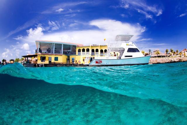 best house reef buddy dive resort bonaire