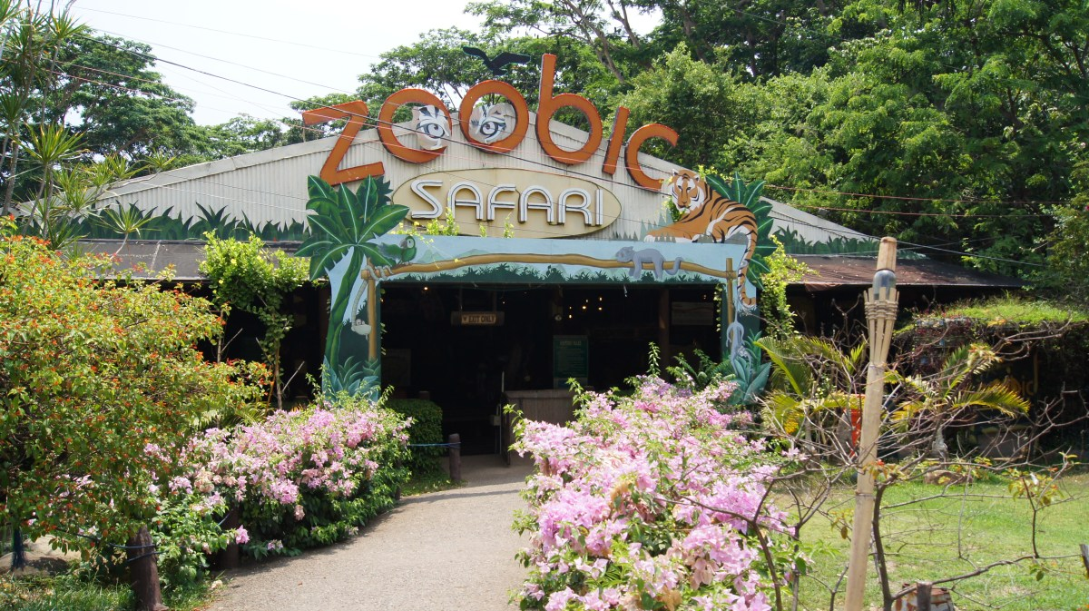 Five (5) Top Reasons to Love Zoobic Safari