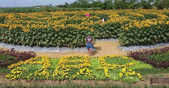 An A-MAZE-ing Date in Pangasinan